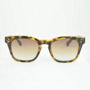 Occhiale saraghina michelangelo-26mun tartarugato,lente sfumato marrone.