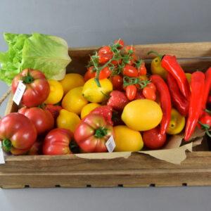 Frutta e verdura mista finta